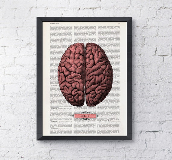 Spring Sale Brain, USE IT, Human Anatomy art Dictionary Print Anatomy  Funny gift, Brain print, wall art college dorm gift BPSK054