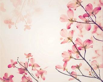 Pink Dogwood Print, dogwood, flower, dogwood tree, fine art photography, nature print, pink flower print, petals, dogwood tree