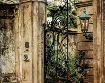 Charleston South Carolina Historic Architecture Legare Street Italian Renaissance Revival Columns Iron Decorative Gate Fine Art Photo Print