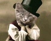 D.W. Booker - Vintage Print - Anthropomorphic - Altered Photo - Unique Art - Funny Animal - Cute Animal - Gift Idea- Cat Top Hat Print