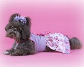 VALENTINE OWL Dog Dress
