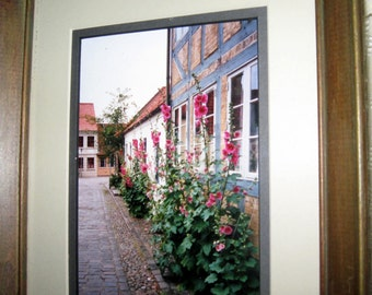 Pink Hollyhocks Danish Framed Photo - Vintage Denmark Pink Flower Street Scene from Odense