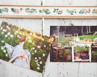 Pastel Photography Set, 5 Postcards, Flower, Garden, Botanical Photograph Collection, Pink Dreamy Fine Art Print, Paris, Nature Postcard
