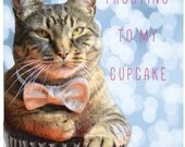 You're the Frosting to my Cupcake Postcard with a cat in a bow tie