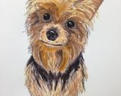 CUSTOM ORDER Watercolor Pet Portraits