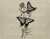 Butterflies Flowers Instant digital download graphic image for iron on fabric transfer burlap decoupage scrapbook pillow card tote No. gt132