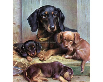 Dachshund Fabric Block | Mother Dog with Puppies | Pup Sleeps