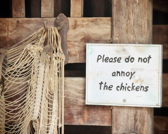 Please Do Not Annoy the Chickens, Rural, Farm, Photography