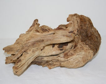 Northern California Driftwood Fragment Home Decor
