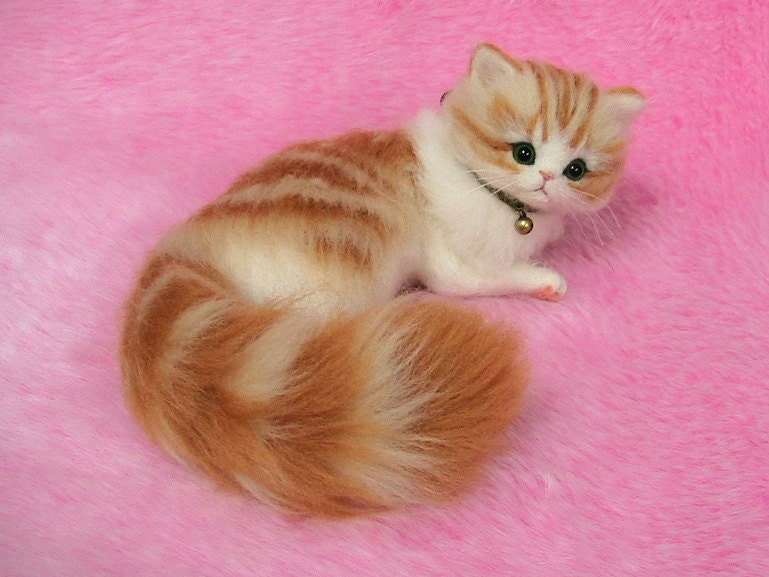 fluffy white and orange cats - photo #16