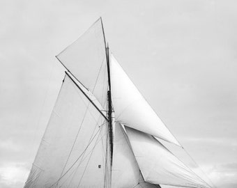 Jubilee Racing Cutter Yacht 1893 Photo Reproduction 8x10 Sailboat at America's Cup Race Vertical Print