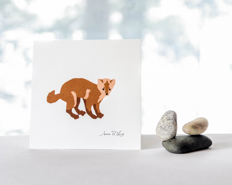 pine marten drawing canadian wildlife marten illustration