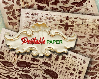 BOTANY -  3 SHEETs Printable wrapping papers for Scrapbooking, Creat - Download and Print