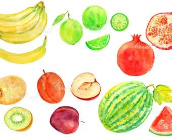 Digital watercolour fruits - banana,water melon,lime,plum,kiwi fruit,pomegranate clipart printable instant download scrapbook (set2)