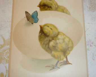 Large Egg With Butterfly and Two Little Chicks Antique Easter Postcard