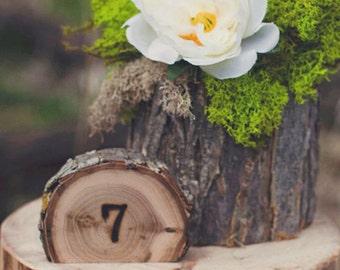 Rustic Wedding Tree Slice Table Numbers