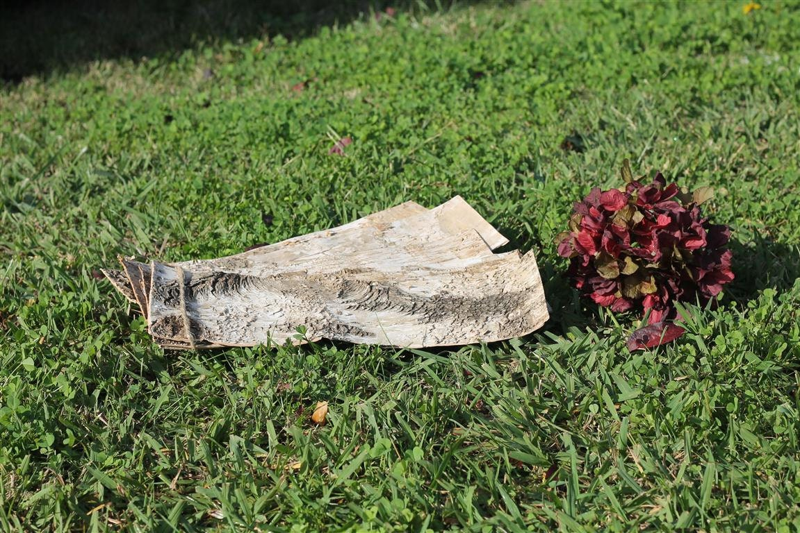 Natural Birch Bark Sheets For Candle Vases Weddings Decor