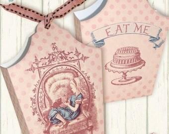 printable  Alice in Wonderland Bag  INSTANT DOWNLOAD digital collage sheet