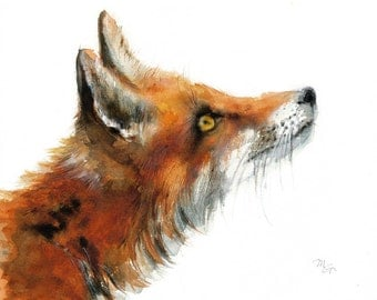 Fox print . Animal watercolor Illustration. Red and Orange.