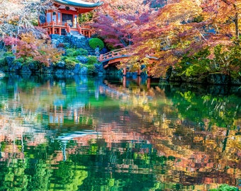 "Autumn Color Eruption - ""Kyoto Fall 2"" -  Fine Art Photograph (9.5"" x 13.25"" Print on 14"" x 18"" Board)"