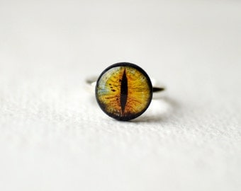 Dragon Eye - Cats Eye - adjustable ring