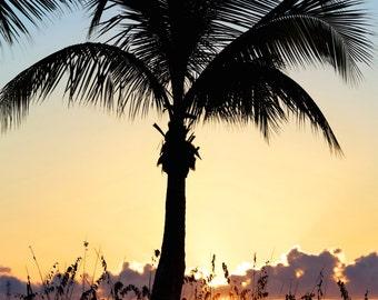 Paradise ~ Turks and Caicos, Caribbean, Paradise, Islands, Tropical, Beach, Nautical, Ocean, Sunset, Coastal Decor,  Beach Photography, Art