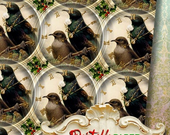 DARK BIRDs - Printable wrapping paper for Scrapbooking, Creat - Download and Print