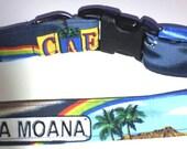 """Hawaiian Fabric Over Webbing Adjustable Dog Collar--""""Happy Days"""" Hand Made in Hawaii with Aloha"""