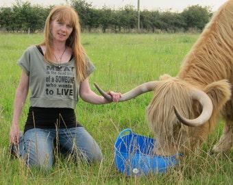 calf sanctuary designer animal rights t shirts
