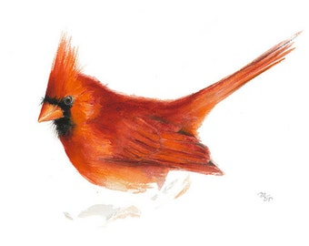 Bird watercolor, Cardinal print - Archival print of watercolor painting. Bird Print. Nature or Bird Illustration, Red and Orange.