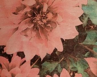 Floral Wall Art, Dahlia, Original photo transfer, Size 8.5 x 7