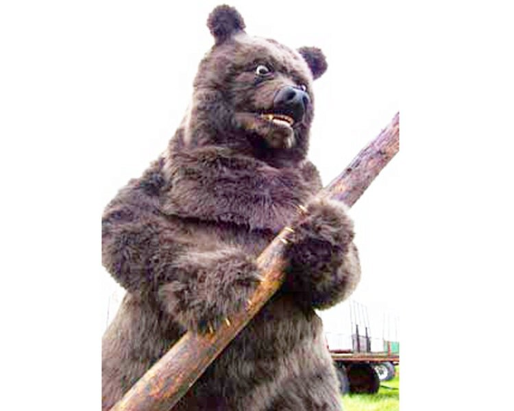 Realistic Grizzly Bear Animal costume. ADULT by TentacleStudio - photo#14