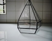 Geometric Glass Terrarium for Succulent Planter,Air Plants,indoor Garden,Gifts