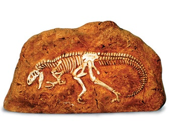 Allosaurus in Rock Replica | Small