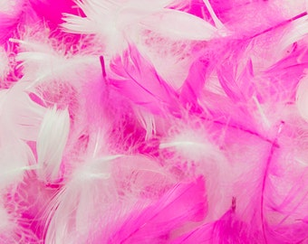 White & Shocking Pink Goose Coquille Feather