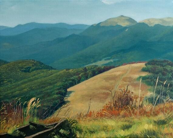 mountain meadow autumn above - photo #26