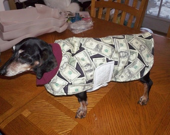 Extra Warm Money Winter Dog Coat For Very Cold Days-with Cotton Batting and Quilting and Poly Fill by B.Grant