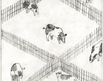 Happy Cow Etching