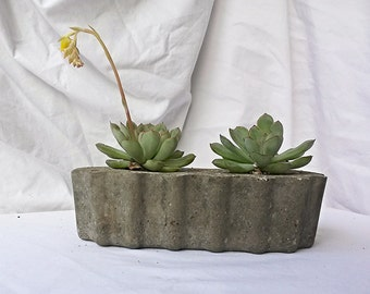 Unique Hypertufa Planter