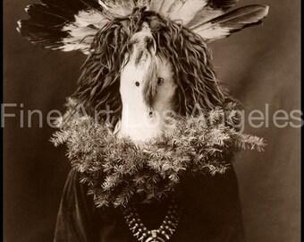 Edward Curtis Photo - Haschogan - Navaho