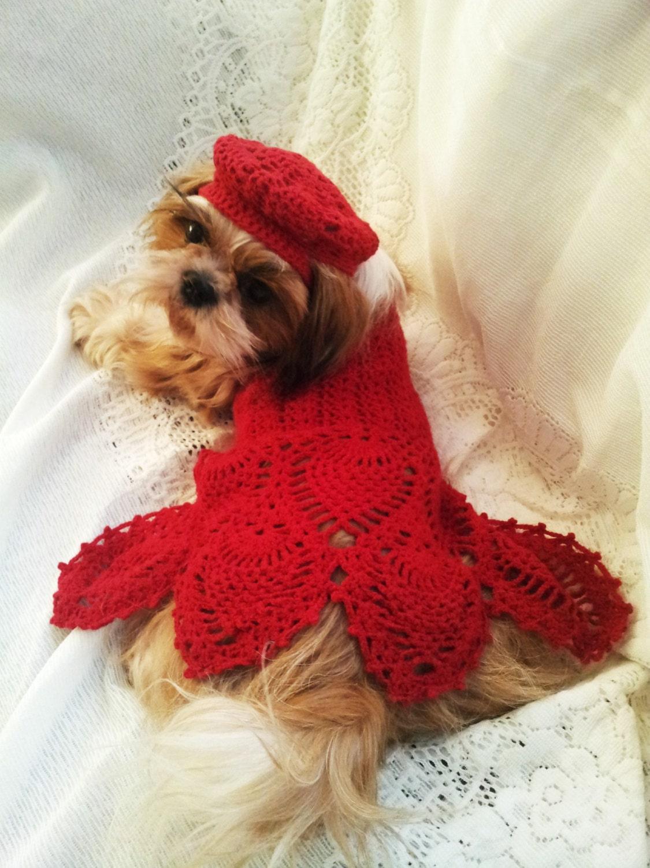 Digital pattern crochet red pineapple lace motif dog dress zoom bankloansurffo Images