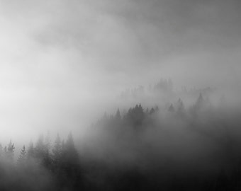 "Black and White Photography Print , Fog and Mountain Trees, Pacific Northwest, Minimalist Fine Art Landscape, Living Room Art ""Mountain Fog"""