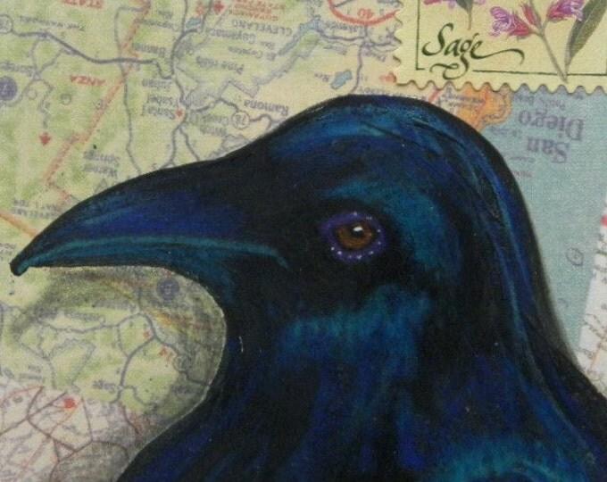 Sage Raven Crow Original ACEO