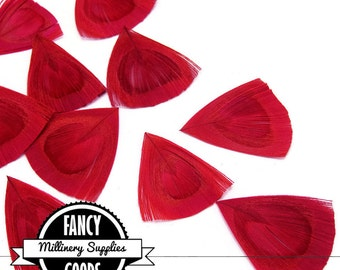 12 - Red - Cut - Peacock Feather - Eyes -Petals - Millinery -Fascinators