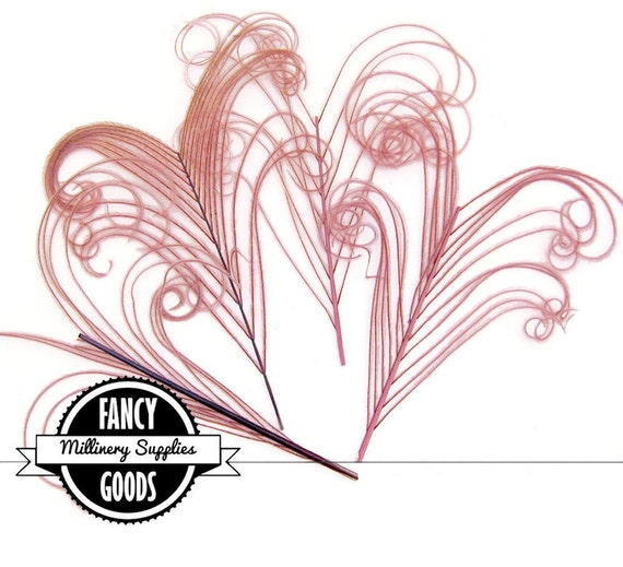 4 - Curled - Peacock Stems - Sprigs -  Feathers - Dusty Pink - Dusty Rose