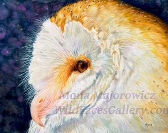 Owl Art, Barn Owl Art, Barn Owl Print, Owl Painting, Owl Artwork, Bird Art, farm decor, country decor, farm art, country art, bird painting