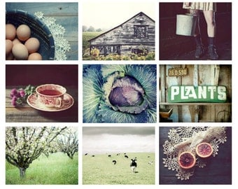 Photography set | farmhouse rustic country life | rustic wall art | farm country garden photography | barn photograph