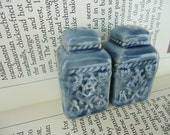 Mini Blue Salt and Pepper Shakers