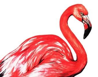 Delta The Flamingo Illustration  Print
