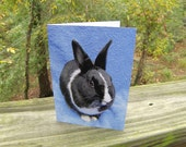 Stella in Blue Greeting Card - Black & White Bunny Dutch Rabbit All Occasion Blank Card
